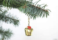 Jingle Bells au Conseil d'Etat !